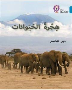 بيج كات المستوى 13 هجرة الحيوانات